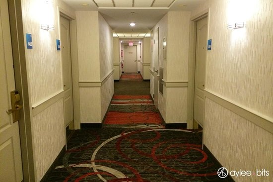 Holiday Inn Express & Suites Boston - Cambridge: 8th floor hallway