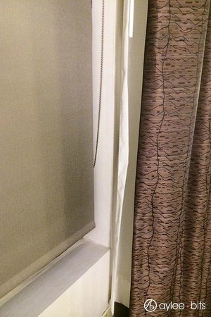 Holiday Inn Express & Suites Boston - Cambridge: Window treatment