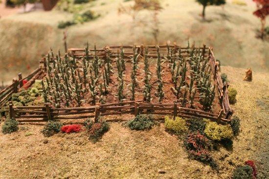 St. Jacobs & Aberfoyle Model Railway: farmers field