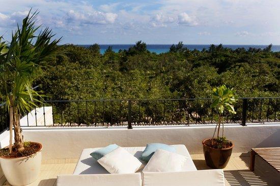 hotel la semilla updated 2018 prices reviews riviera. Black Bedroom Furniture Sets. Home Design Ideas