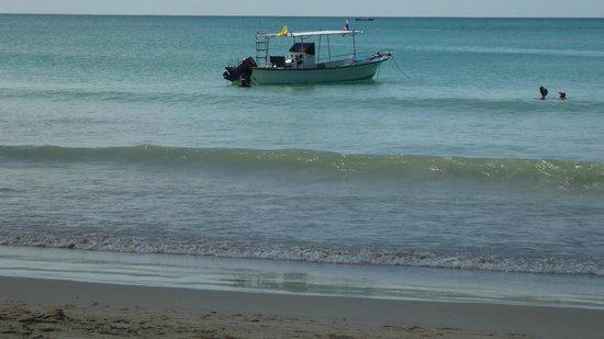 Aqua One Watersports: Hier finden bis zu 10 Tauchern Platz.