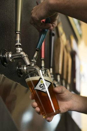 Honeoye Falls, Estado de Nueva York: Always 23 craft beers on tap