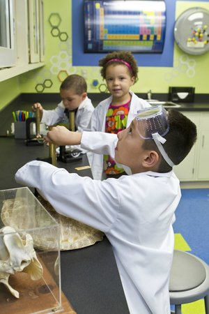 Explore More Discovery Museum : Merck Science Lab