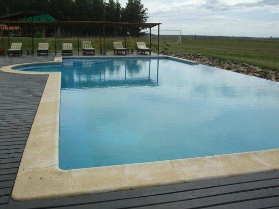 Estancia Finca Piedra: The nice pool