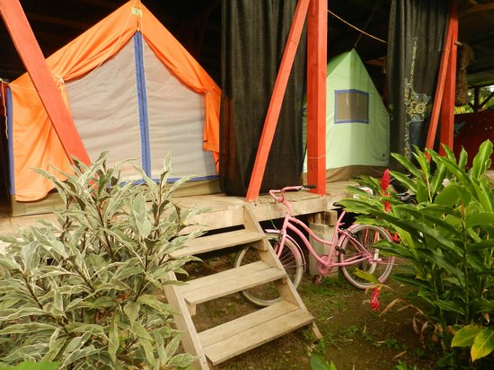 Hostal Camping la Y Griega : tents for rent