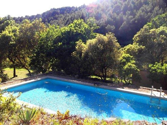 La Bastide du Vallon : Piscine