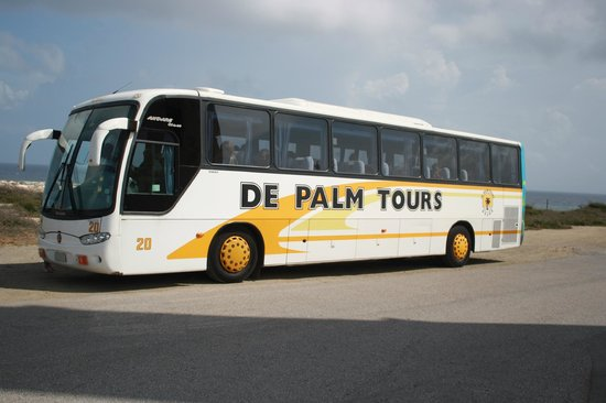 tour bus picture of de palm tours oranjestad tripadvisor. Black Bedroom Furniture Sets. Home Design Ideas