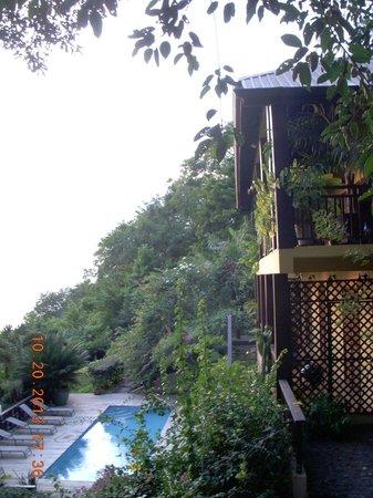 Villa Pomme d'Amour: pool area
