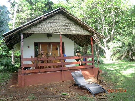 Le Jardin Maore: bungalow