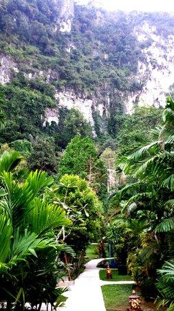 Vipa Tropical Resort: Grönt o fint o bergen intill!
