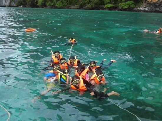 Phi Phi Islands : Snorkling
