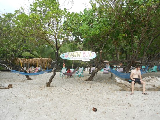 Hotel Luz De Vida: BANANA BEACH ON SITE RESTAURANT/BAR