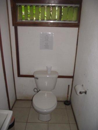 Hotel Luz De Vida: TOILET ROOM