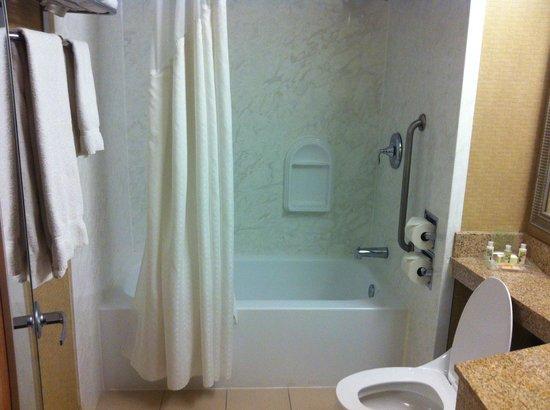 Holiday Inn Downtown Superdome: bath