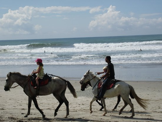 Hotel Luz De Vida: HORSE BACK ON BEACH