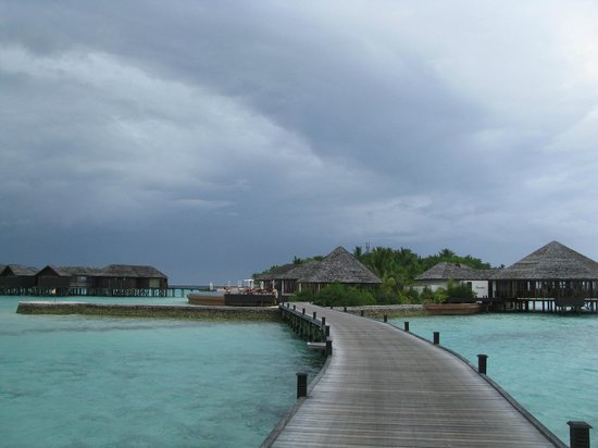 Lily Beach Resort & Spa : Hotel as seen from the over water bungalows