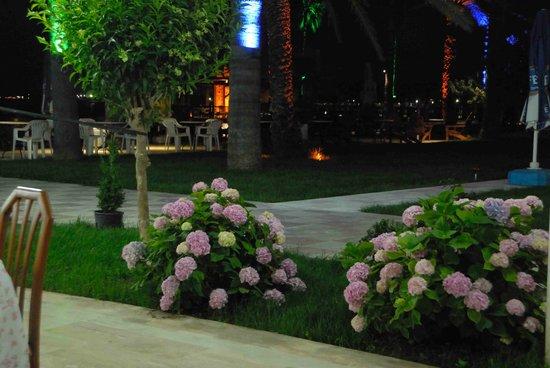 Photo of Arsuz Hotel Iskenderun