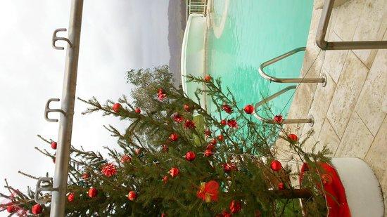 Hotel Saturno Fonte Pura: Natale!!!