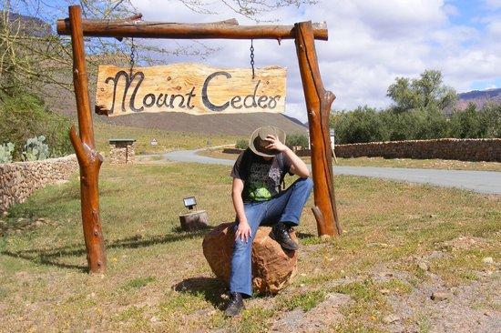 Mount Ceder Guest Cottages : The cowboy of Mt Ceder