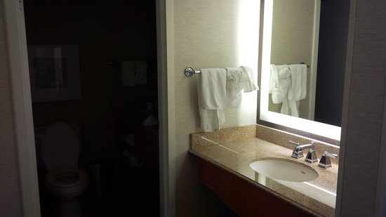 Hilton Marco Island Beach Resort : bathroom