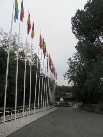 The Church Village : Flags