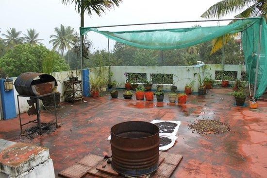 Koshys Homestay: Roof deck