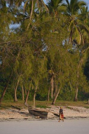 Waterlovers Beach Resort : Strand
