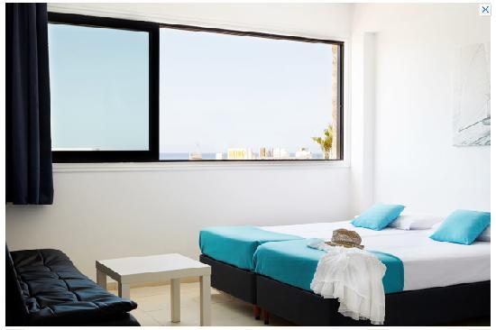 Margarita Napa Apartments : studio