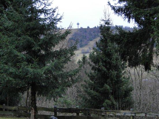 Haus Am Hirschsprung: Ons uitzicht op de toren c.q. skipiste