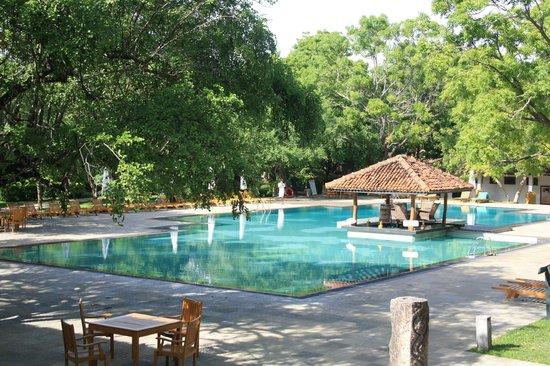 Amaya Lake: Pool