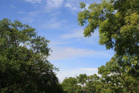 Amaya Lake: Clear skies