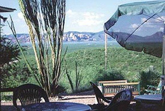 Landmark Lookout Lodge: Attractions