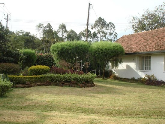Aero Club of East Africa: Manicured Gardens