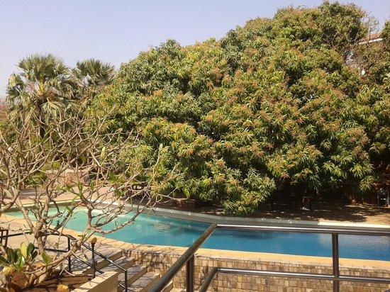 Backyard Picture Of U Tan Sea Resort Mumbai Tripadvisor