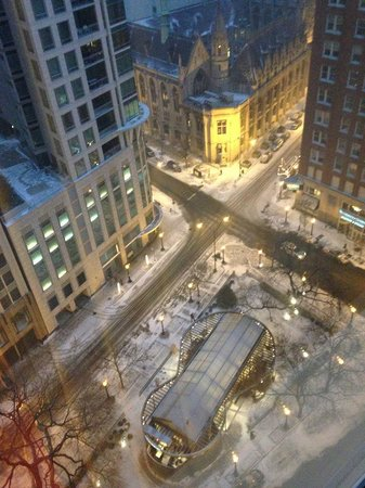 Sofitel Chicago Water Tower: Amazing view from room.