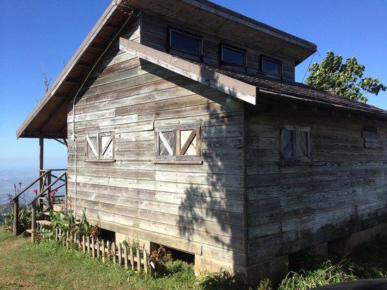 Holywell Park : Cabin