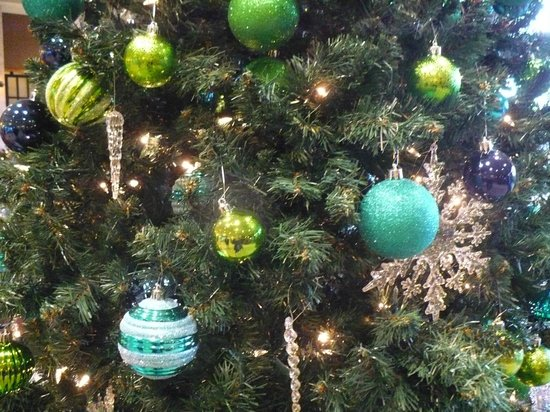 Holiday Inn Hotel & Suites North Vancouver: Spectacular Tree