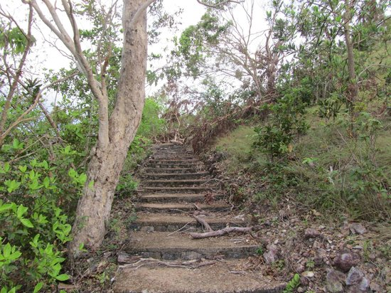 Busuanga Island Paradise: resort trail leading to view point