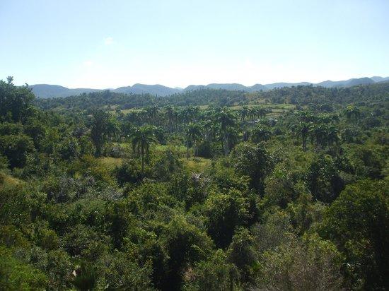 Hotel Club Amigo Atlantico Guardalavaca: Nature luxuriante sur la route de Holguin