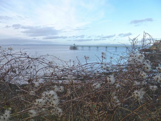 Clevedon Pier and Heritage Centre: lovely at any time of year