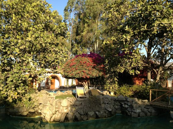 Hotel Majoro: Garden