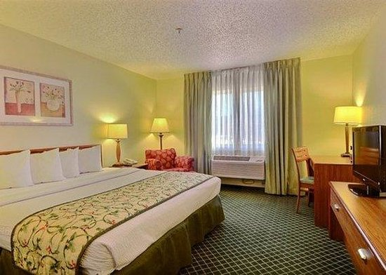 Quality Inn & Suites Golden - Denver West - Federal Center: Guest Room