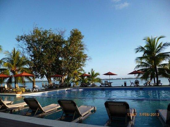 Playa Tortuga Hotel & Beach Resort : Pileta