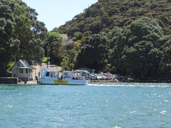 Cathedral Cove Scenic Cruises: beautiful