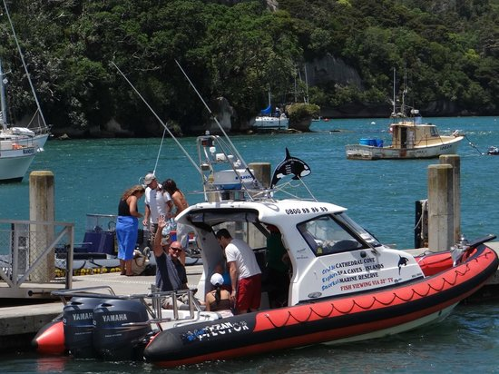 Cathedral Cove Scenic Cruises: our boat