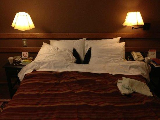 Casa Andina Standard Colca: 'Heating'