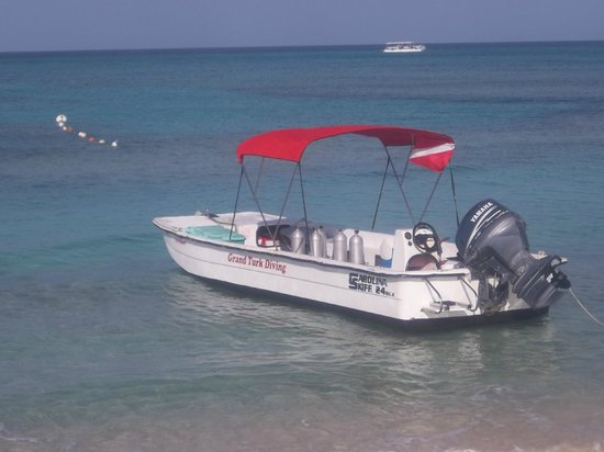 Grand Turk Diving : Our dive boat, the New Moon