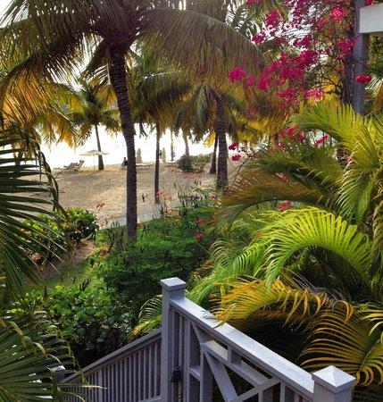 Carlisle Bay Antigua : Carlisle Bay Resort