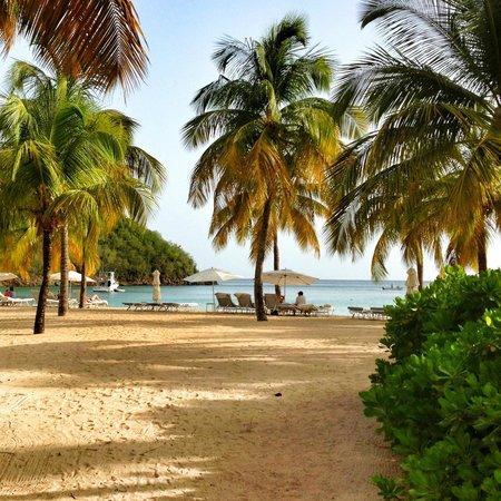 Carlisle Bay Antigua : Beach at Carlisle Bay, Antigua