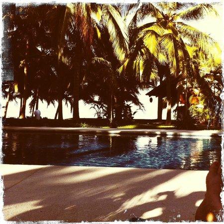 Bungalows Solecito : pool